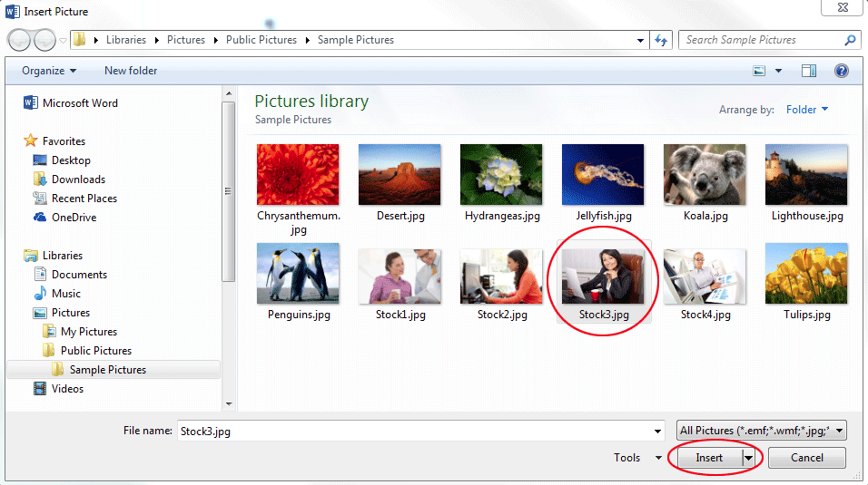 How to fill a shape with a picture in Word. The Insert Picture dialog box.